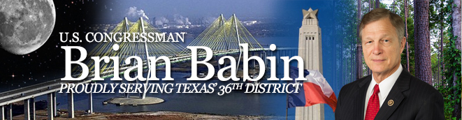U.S. Congressman Brian Babin